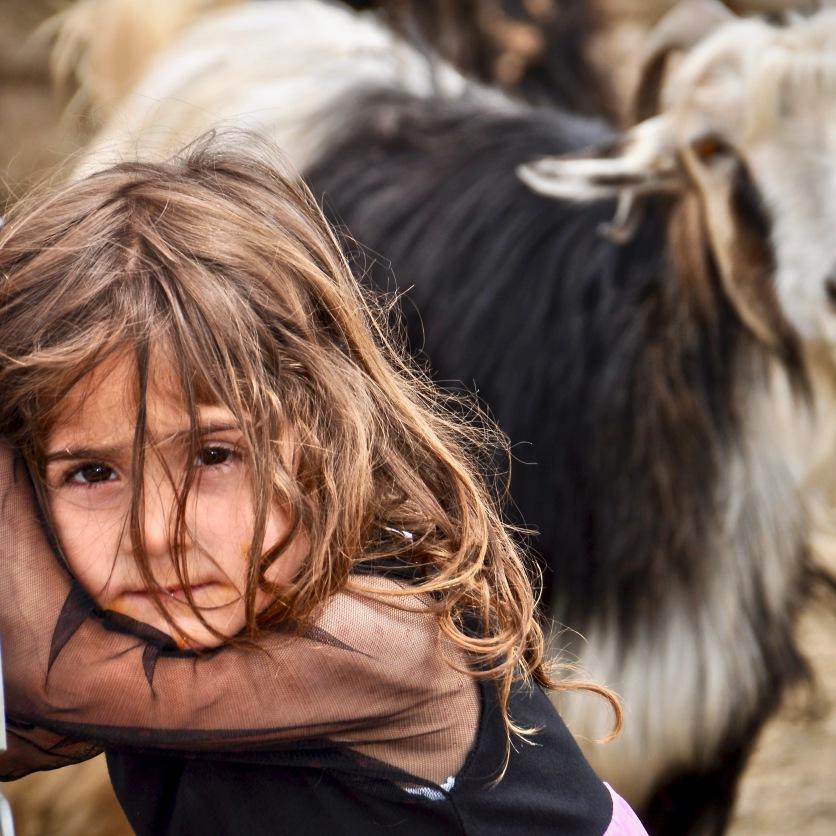 Kurdisches Mädchen einer Hirtenfamilie