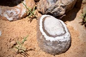 Stein mit Salzablagerung