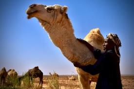 02 Beduine ohne Grenzen. Ein Viehhirte aus Sudan, arbeitet für einen Jordanier und betreut dessen Kamele aus Saudi-Arabien Nahe der syrischen Grenze.