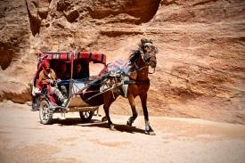 20 Beduinen bieten Transporte mit Pferdekutschen durch den Siq nach Petra, der ehemaligen Hauptstadt der Nabataer.