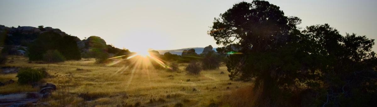 Fotostrecke: Morgenerwachen